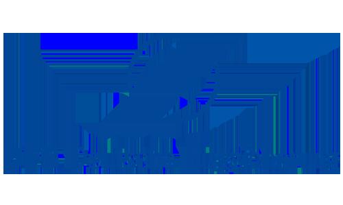 Logo Deutsche Flugsicherung